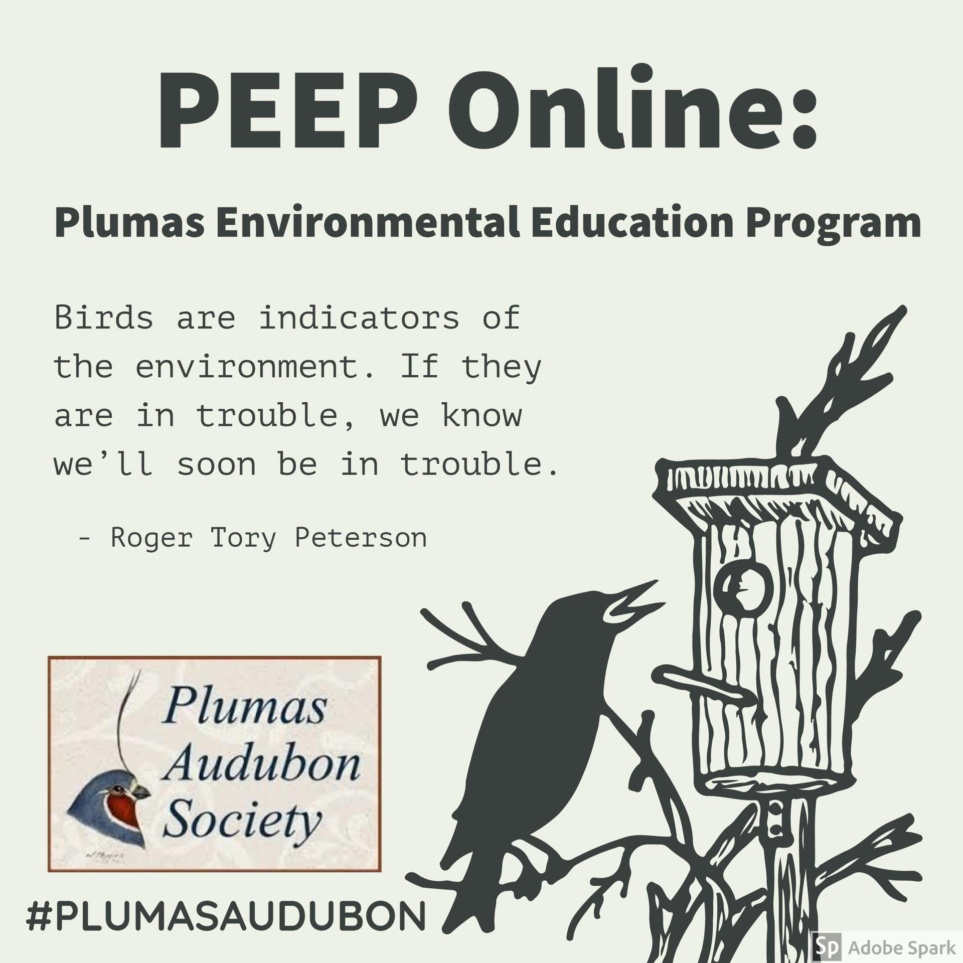 peep program