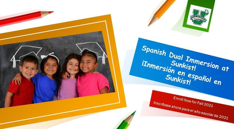 dual immersion pp cover