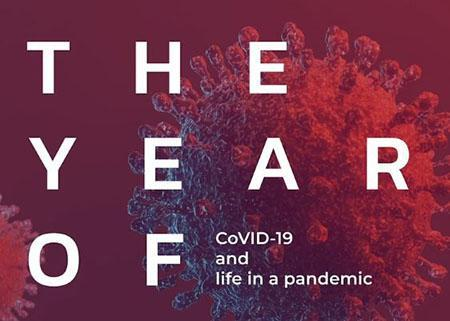The year of covid-19 and life in a pandemic