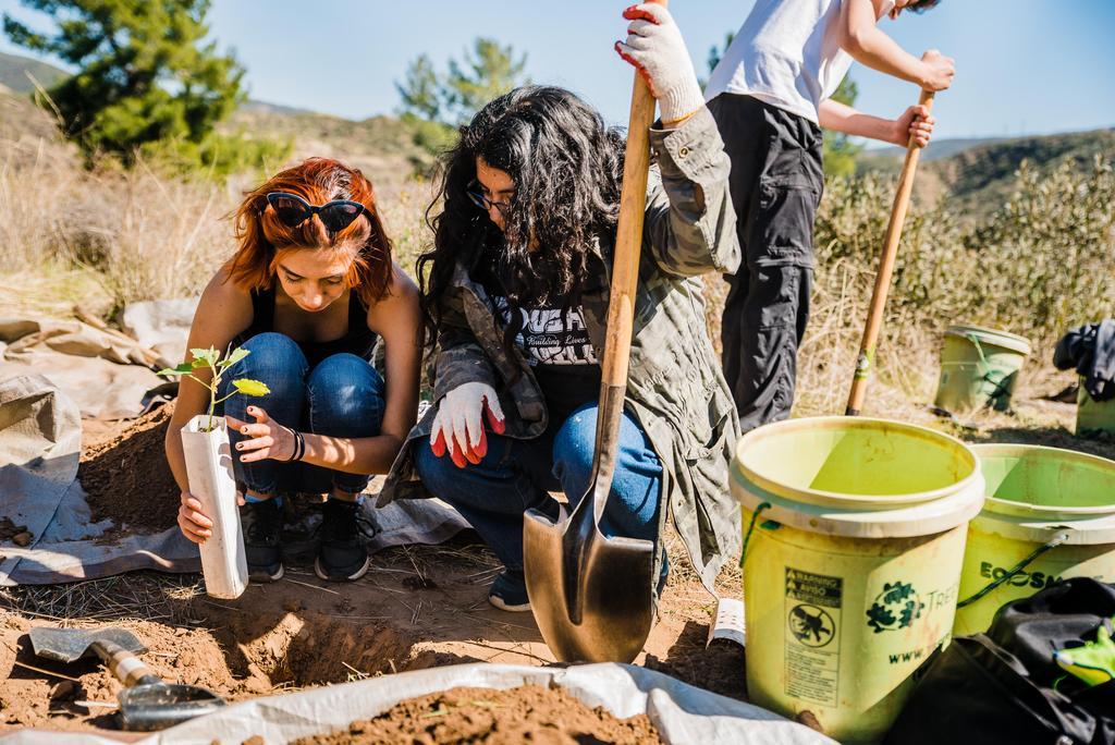 Lennox students plant trees