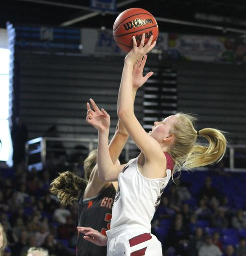 Cheatham County's Abbi Douglas and the Lady Cubs advanced to the Class AA state tournament in 2019.
