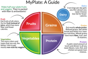 Wolverines - MyPlate A Guide.png
