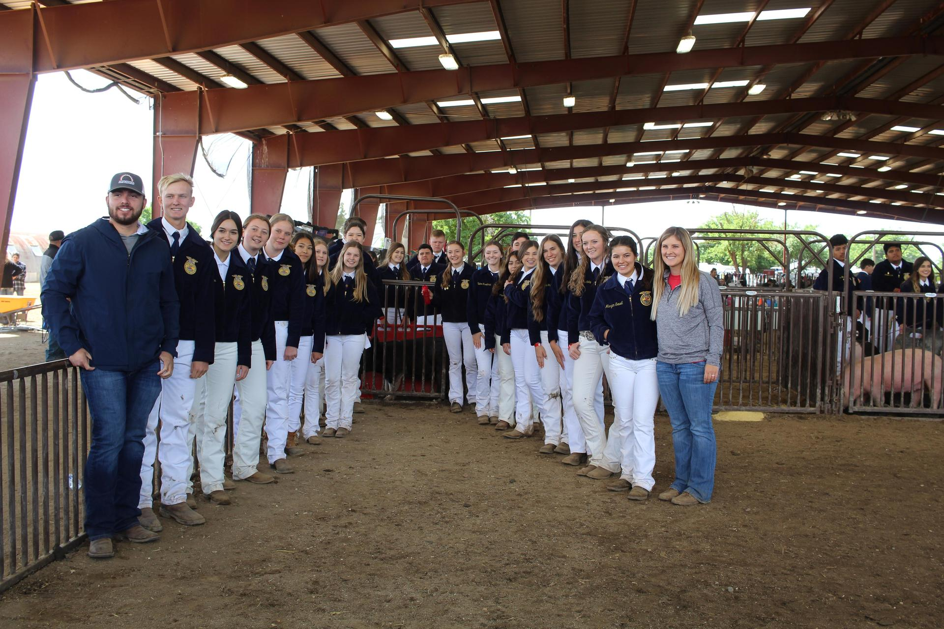 F F A students posing as a group after showing their livestock for judging.