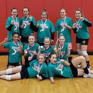 Volley ball Champions