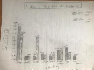 Before and After Bar Graph