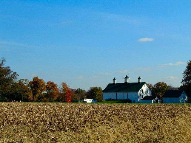 Harvested corn field with bank barn in background