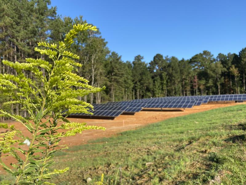 Northeast Middle School Solar Panel Project Update