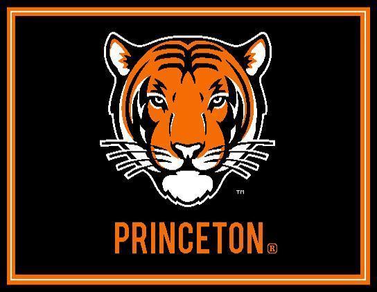 Princeton Tiger '18