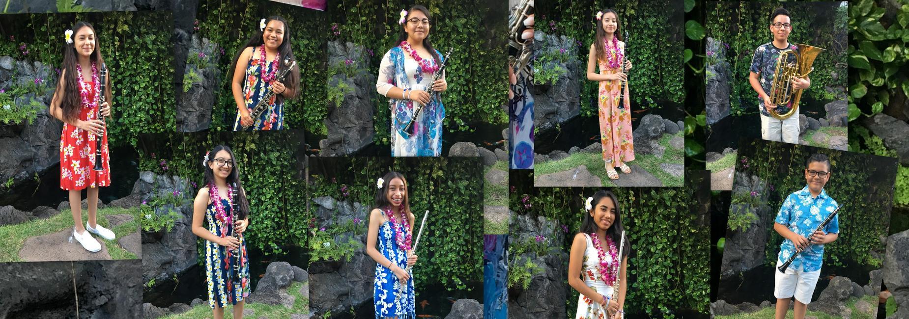 Hawaii Band