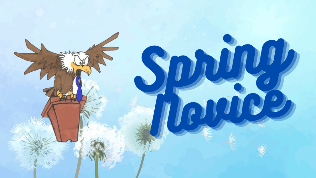 Spring Novice Graphic