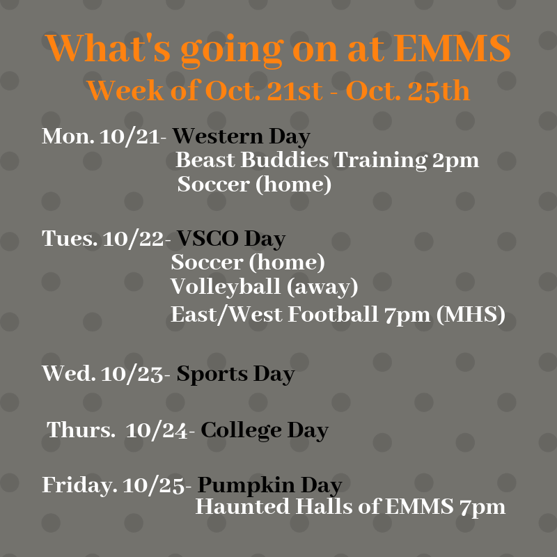 What's going on at EMMS