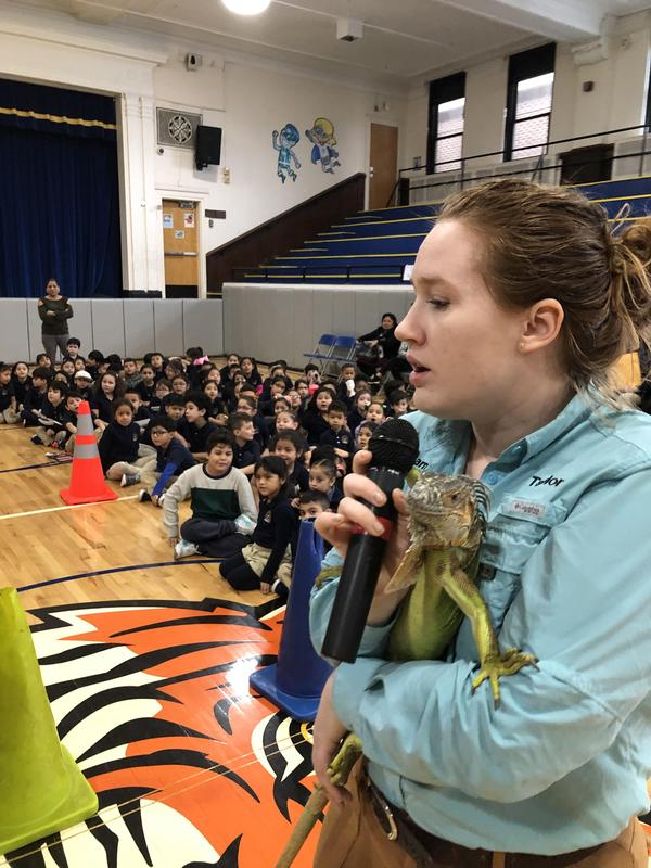 dragon lizard being held by trainer as she talks to the students