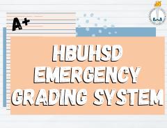 emergency grading system