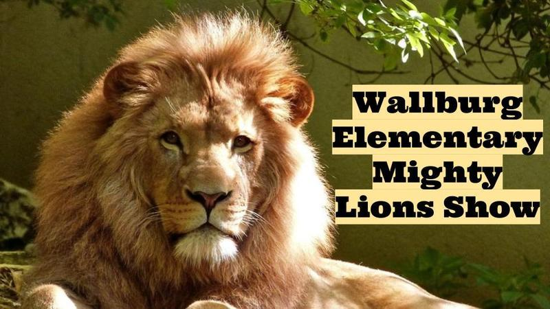 Mighty Lions Show: Teacher Takeover!