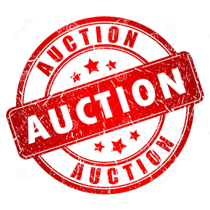 auction-png-conflux-10-auction-1290.png