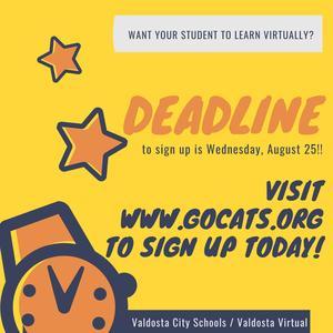 Virtual School Sign Up