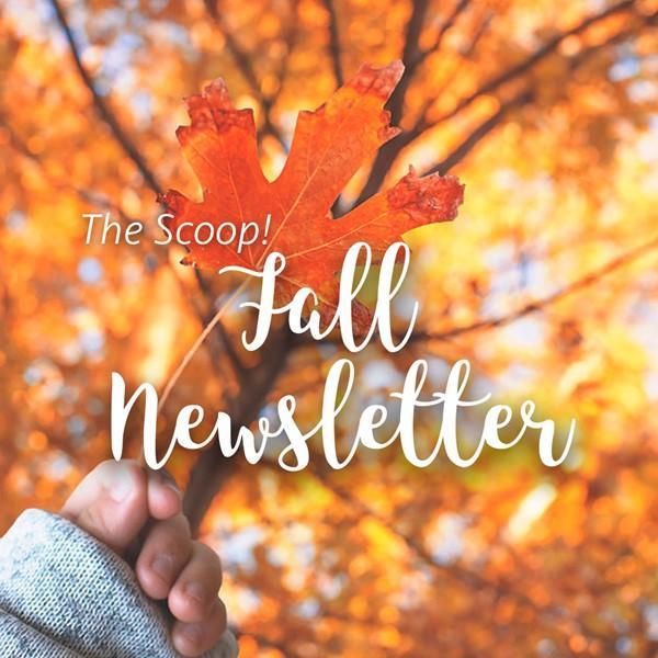 Special Programs Fall Newsletter Featured Photo