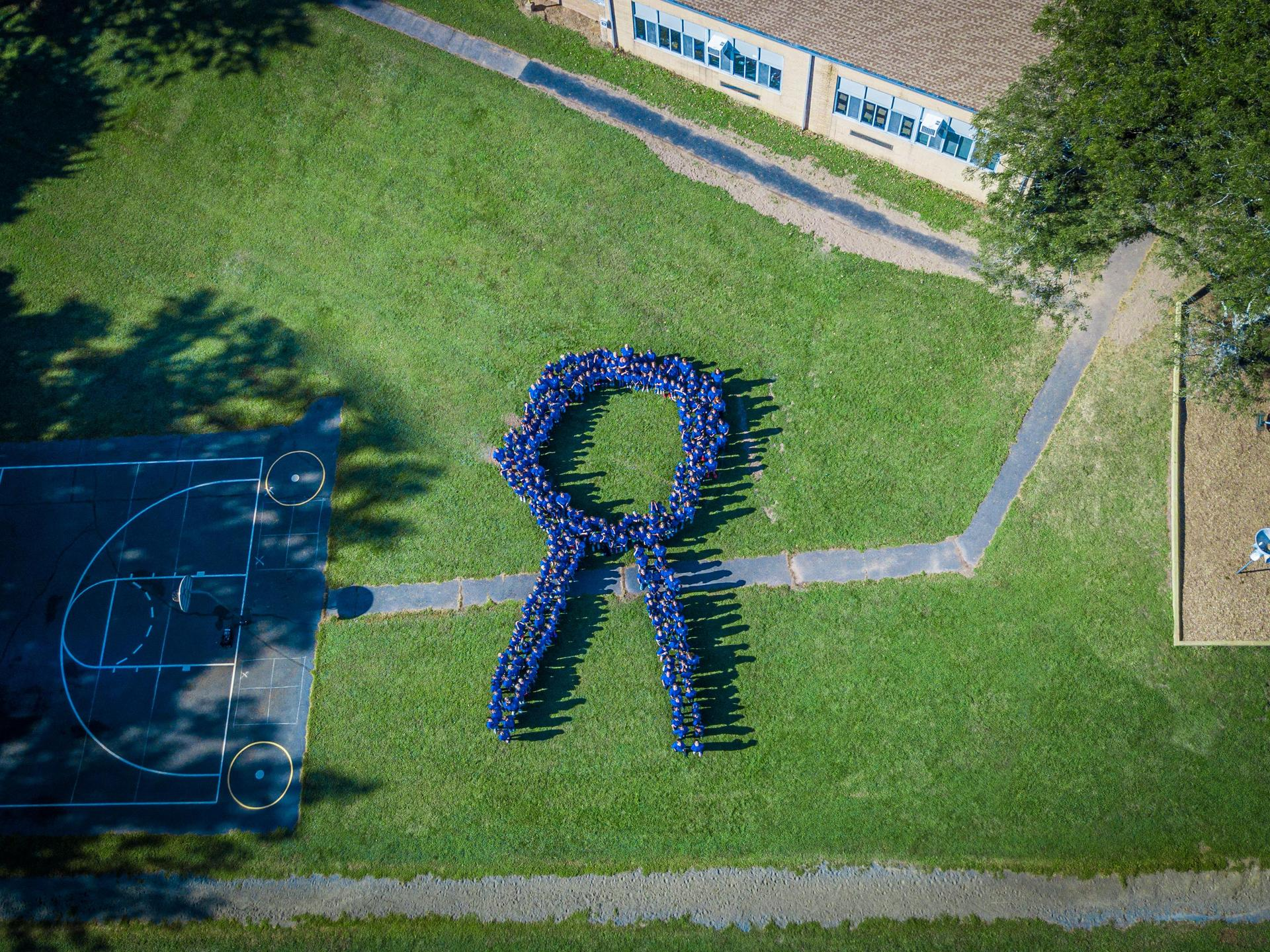 Aerial photo of Washington staff formed in Blue Ribbon