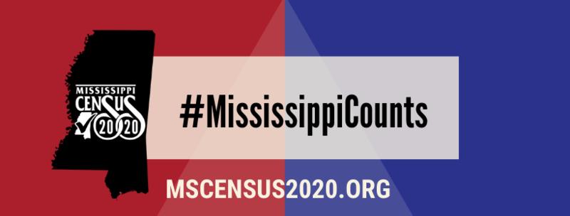 Mississippi Census Graphic