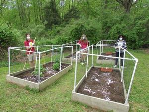 photo of girl scouts and garden
