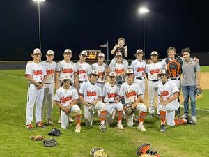 Baseball Area Champs!