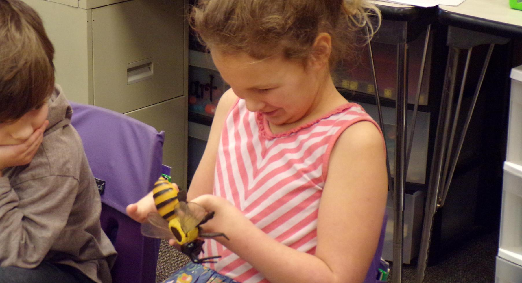 Student looking at model of a bee.