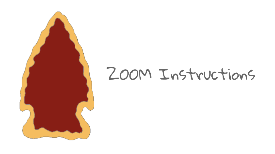 ZOOM Instructions