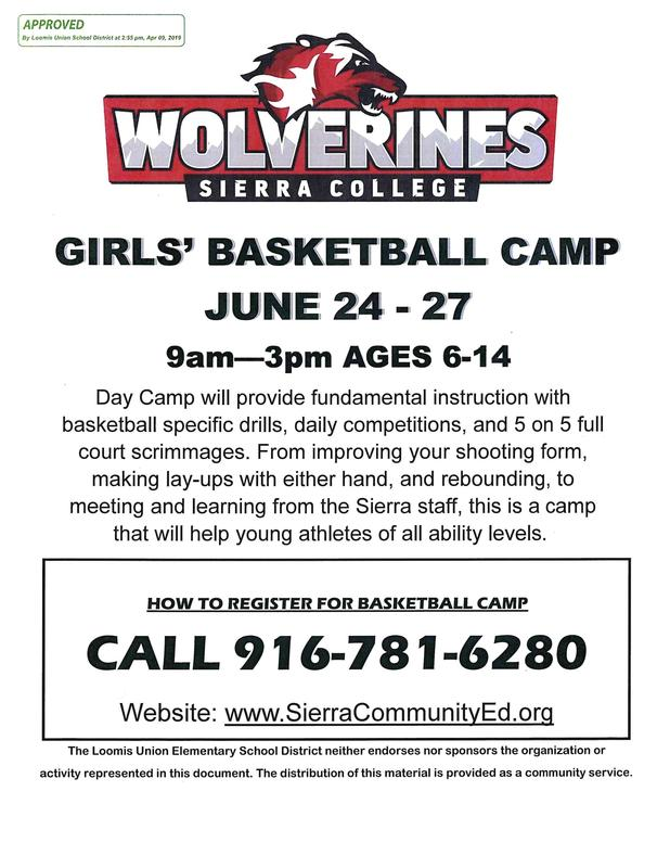 picture of a wolverine for girls basketball camp with details
