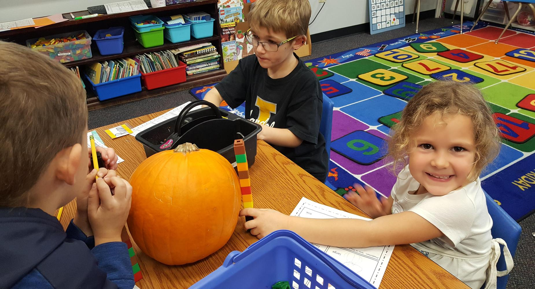 Kindergarten measuring pumpkins