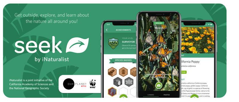 Using i-Seek App together with our Bio-Tech Gardening Program. Education Program that teaches gardening skills together with advanced technology applications. Thumbnail Image