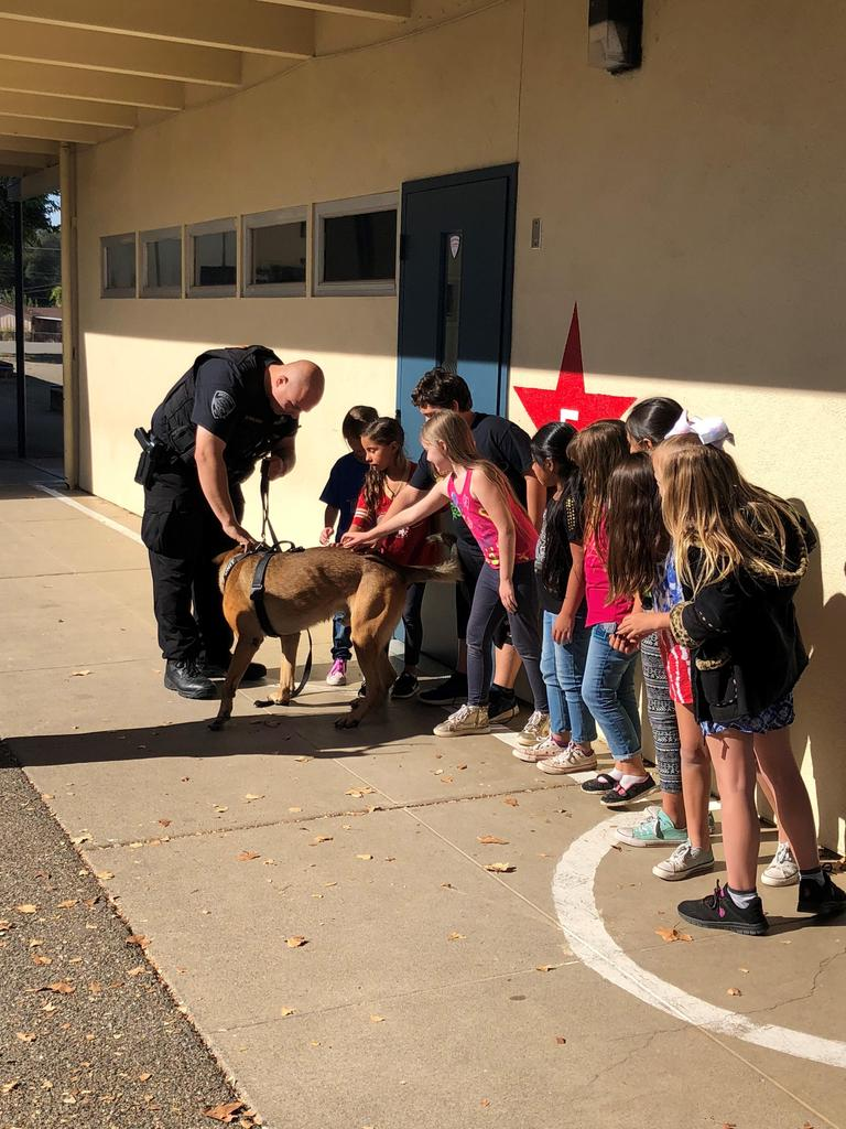 3rd graders petting Anderson Police Officers dog Aero