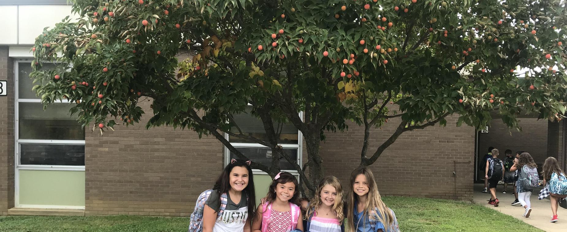 Marshall W  Errickson Elementary School