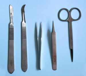 Disecting Tools.png