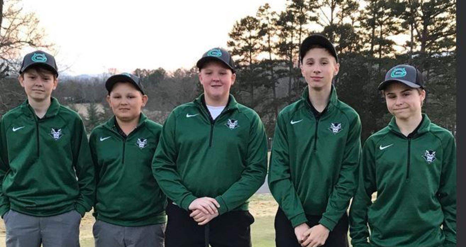 A picture of boys playing golf.