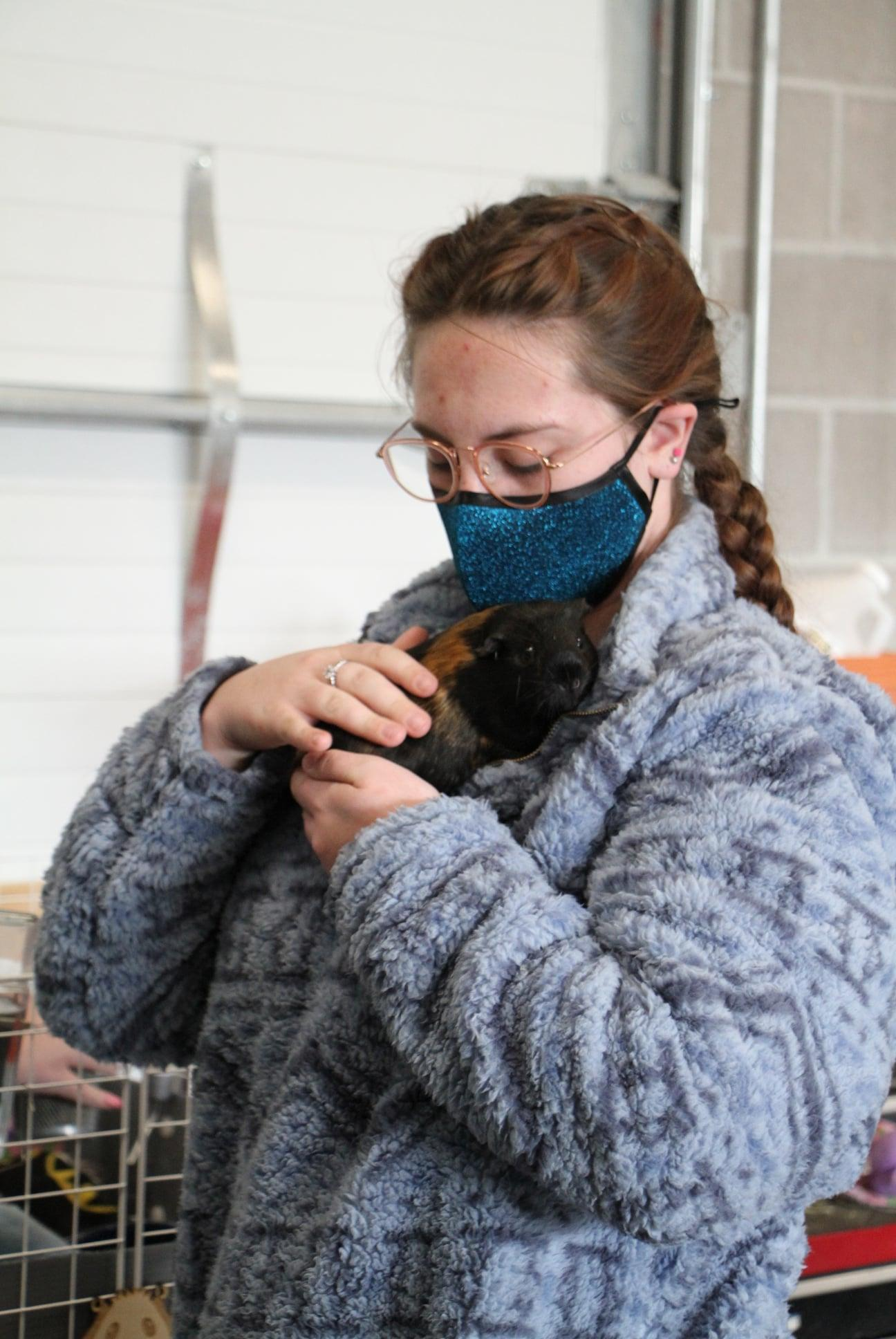 Girl holding guinea pig in Veterinary Science class