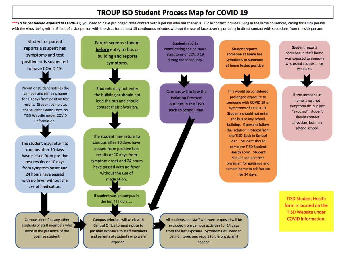 student flow chart