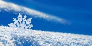 Snowflake 1 .png