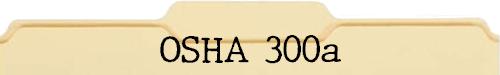 OSHA 300a File Folder
