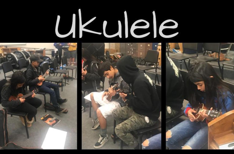 Ukulele class