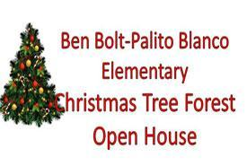 Elementary Christmas Tree Forest Pictures Featured Photo