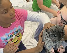 Spring visit by Alley Pond Environmental Center