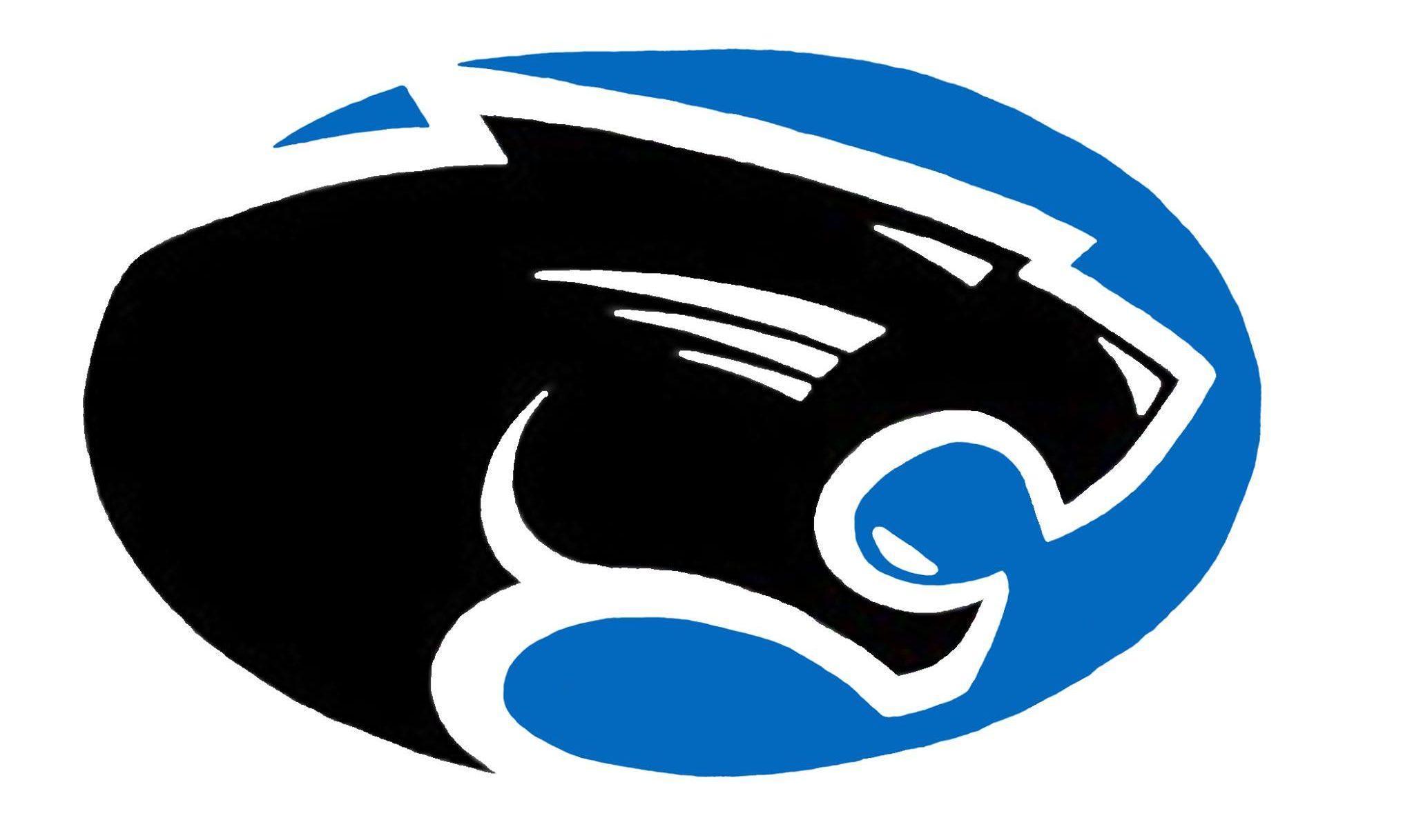 PHHS Panther Logo