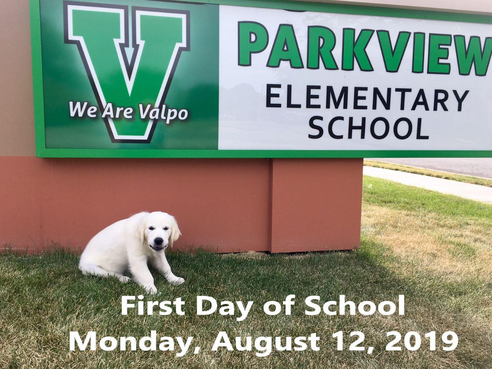 Viking Pup Bella is ready for her first day at Parkview Elementary