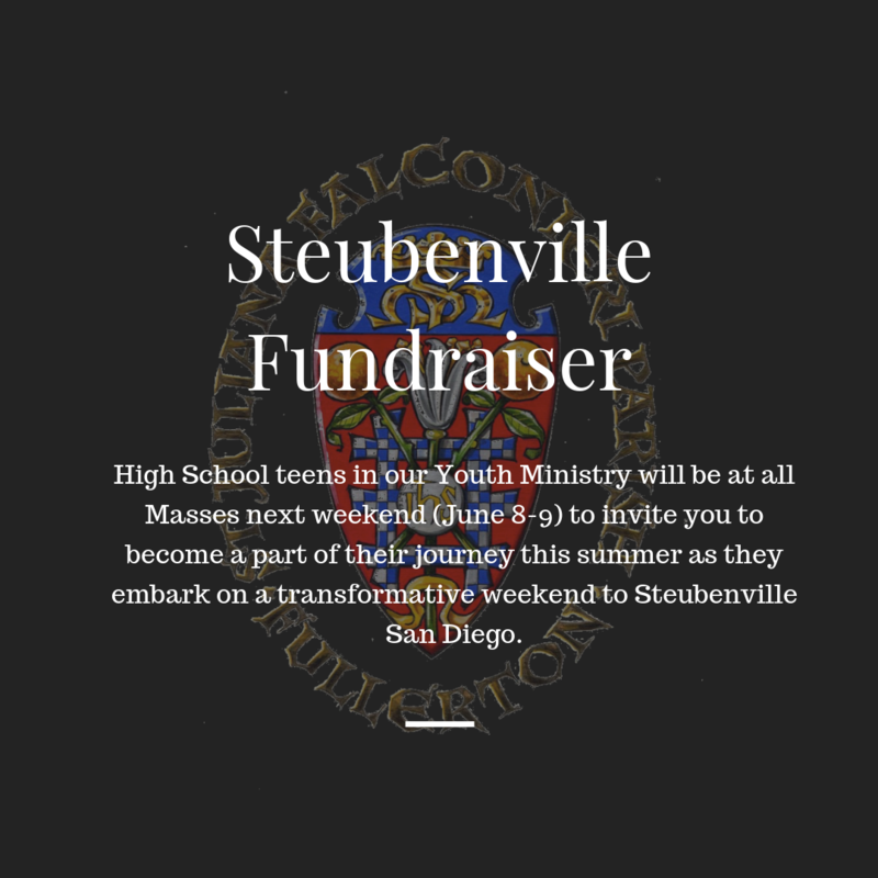 Steubenville Fundraiser Featured Photo