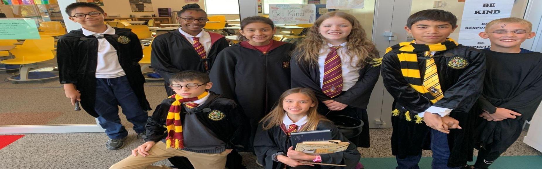CSMS Harry Potter
