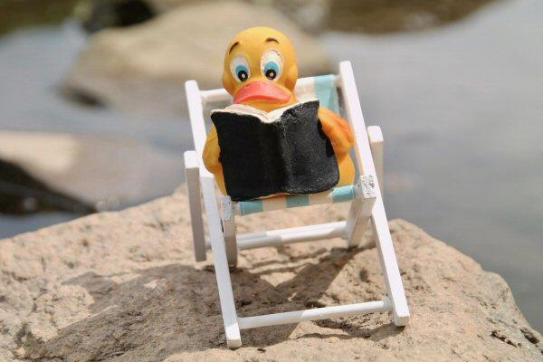 Rubber Duck in Sun Chair Studying