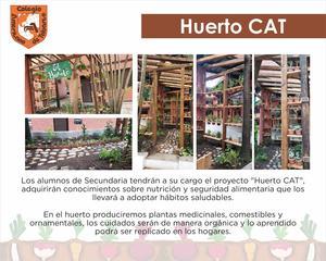 HUERTO CAT.jpg