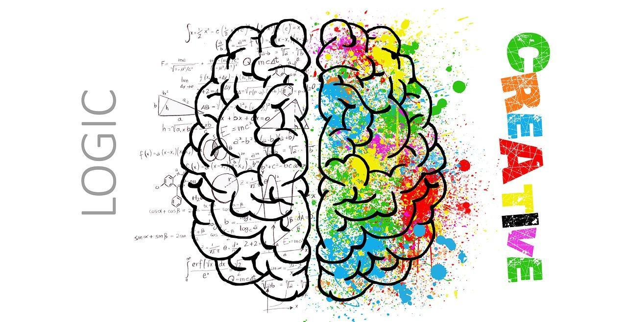 Left brain is logic, colorful right brain is creative