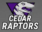Raptors Logo