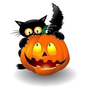 Black cat hiding behind Jack-O-Lantern pumpkin.